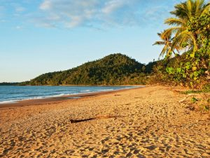 Our favourite holiday destinations in North Queensland